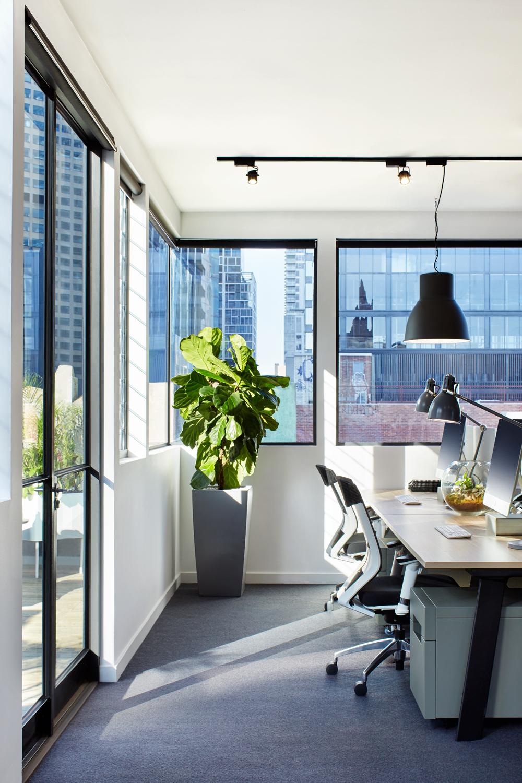 Aleska-Office-3